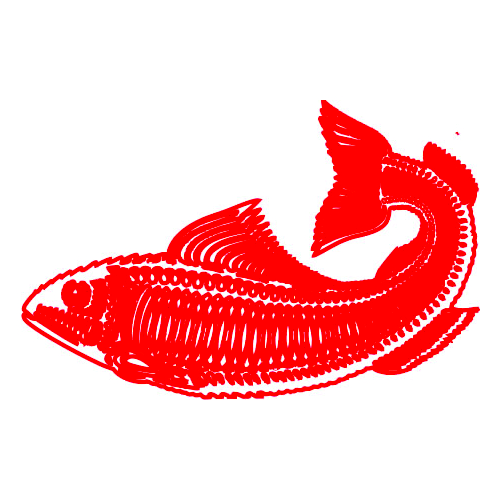 Fish CorelDRAW Free Sample Image